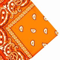 Orange Cotton Paisley Bandana